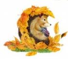 Восень залатая
