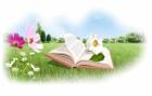 Лето у книжной полки
