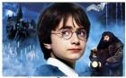 Книжная ночь Гарри Поттера