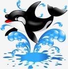 О чем поют киты?