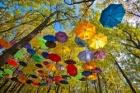Осень – время зонтов!