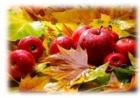 Ураджайная восень