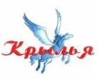 Народному коллективу «Крылья» - 15 лет