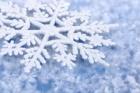 Снежные причуды